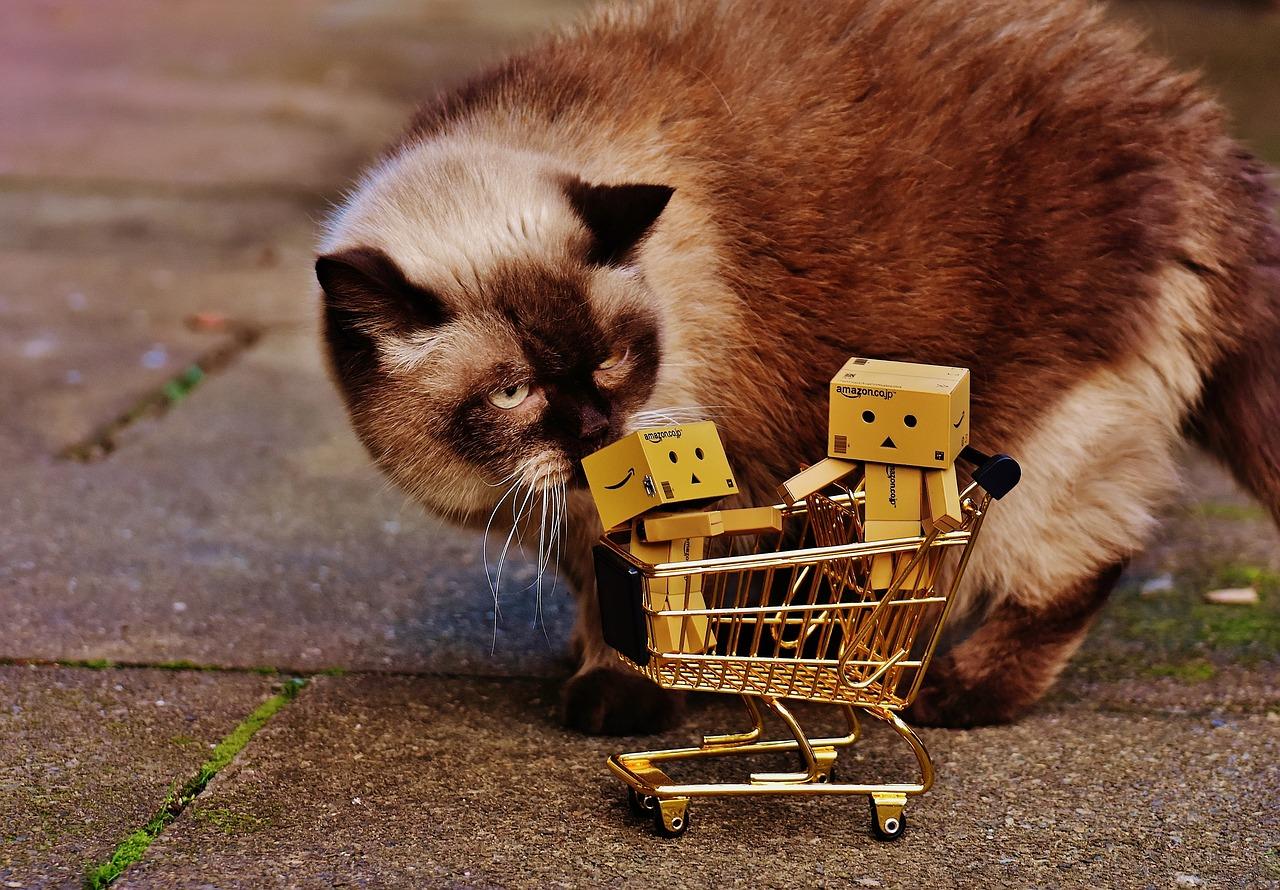 Een ding verkopen in je eigen webshop(je). Foto: CC0/Pixabay/Alexas_Fotos